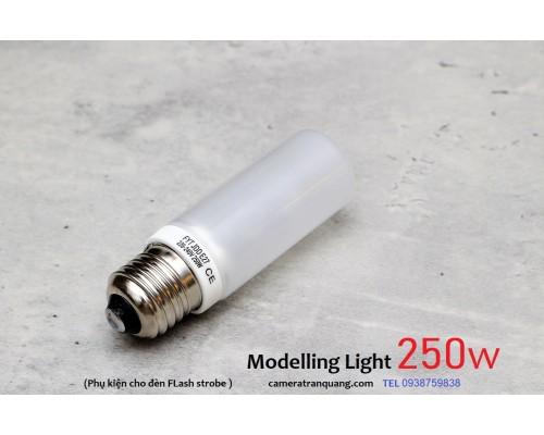 Đèn Modelling Light 250w
