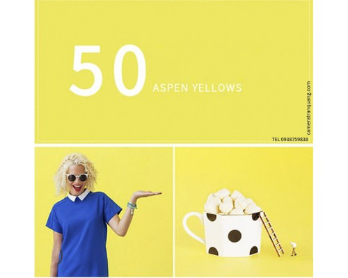Phông màu Vàng số 50